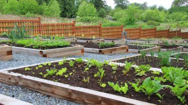 How to start a gardening business